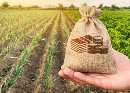 Produtores rurais obtêm pedido de recuperação judicial mesmo com menos de dois anos de registro