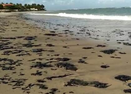 Advogada esclarece direitos de turistas em relação a óleo nas praias do Nordeste