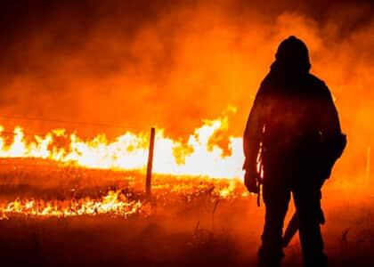 Partido pede que STF obrigue governo a apresentar plano contra incêndios no Pantanal e Amazônia