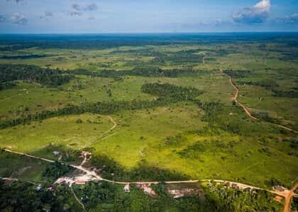 Para Barroso, é equívoco tratar a Floresta Amazônica como empecilho ao desenvolvimento